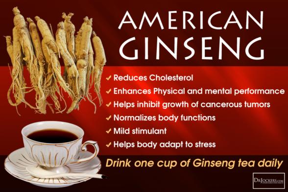 Better Ginseng