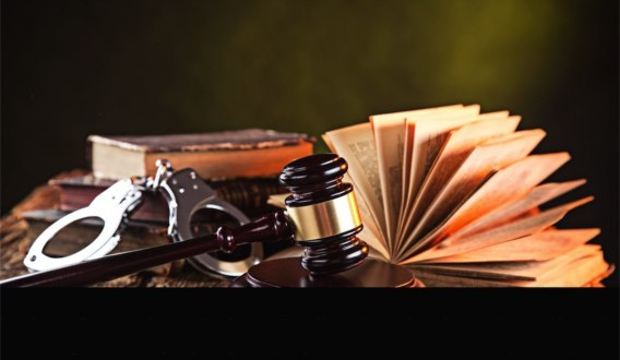 criminal justice professionals and society The criminal justice mission statement: to prepare students for roles as knowledgeable citizens and responsible criminal justice professionals in a global society.